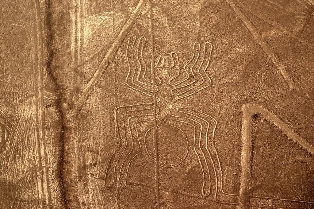 Araña - Linea de Nazca